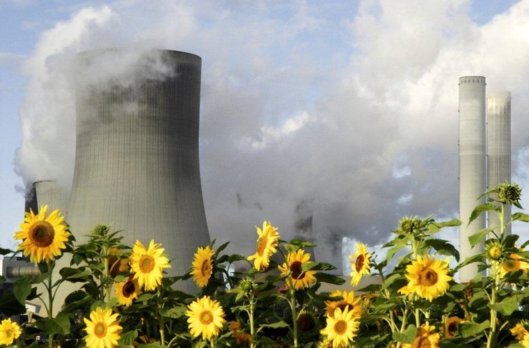 Sunflowers growing in front of a power station